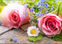 same day flowers delivery north york