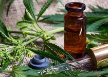 Things to be considered before purchasing CBD oil